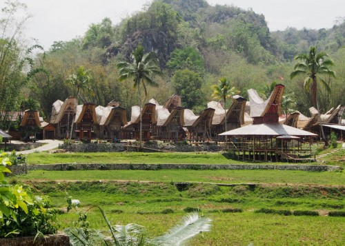 Toraja villages (5)